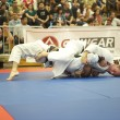 Brown belts fight it out