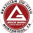 &quot;Test Jiu-Jitsu post&quot;