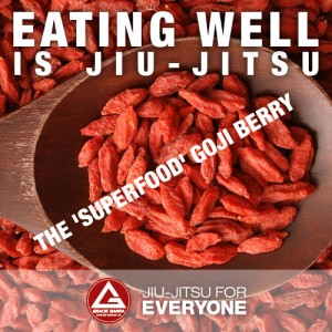 The 'Superfood' Goji Berry2