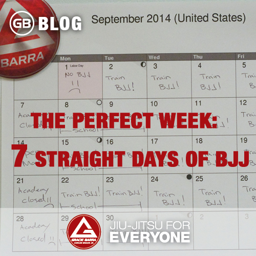 The Perfect Week-  7 Straight Days of BJJ