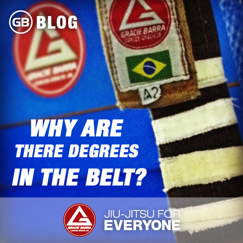 Why are there degrees in the belt-