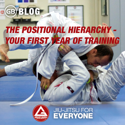 The Positional Hierarchy - Your First Year of Training