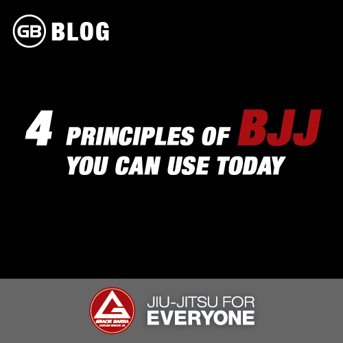 4 Principles of Bjj You Can Use Today