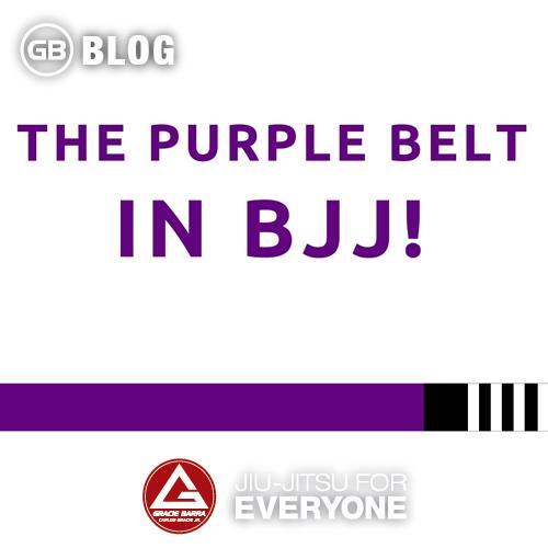 The Purple Belt in Bjj