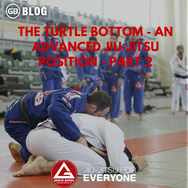 THE TURTLE BOTTOM - AN ADVANCED JIU-JITSU POSITION - PART 2