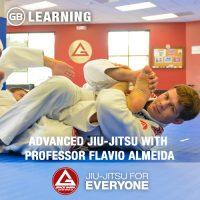 advanced-jiu-jitsu-with-professor-flavio-almeida