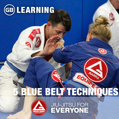 5-blue-belt-techniques
